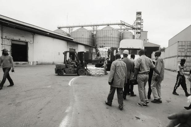 photo-Nigeria-feed-plant